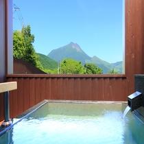 【花由エリア】Cタイプ離れ◆露天風呂から見える「由布岳」