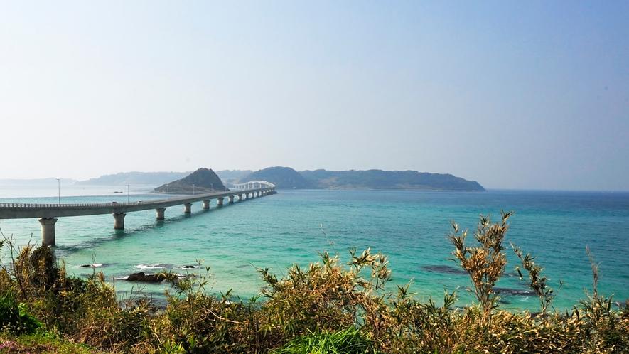 *周辺観光/角島