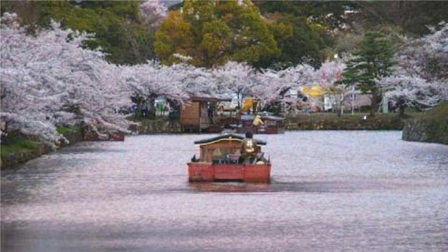 彦根城 屋形船 お花見船