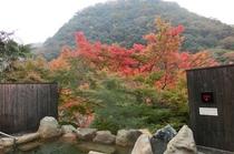露天風呂紅葉