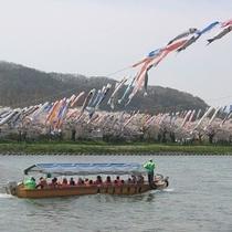 ◆北上展勝地◆さくらまつり期間中(4月中旬〜4月下旬頃)は北上川から桜を眺める「観光遊覧船」も運行!