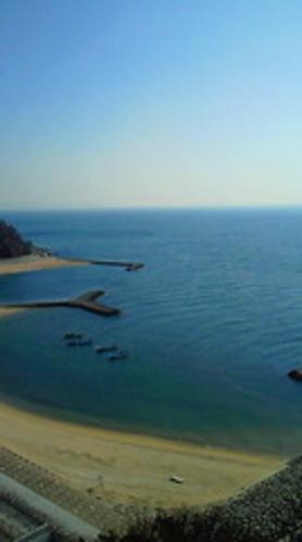 ★西浦パームビーチ