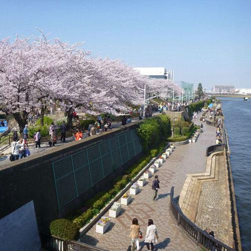 隅田川隅田公園