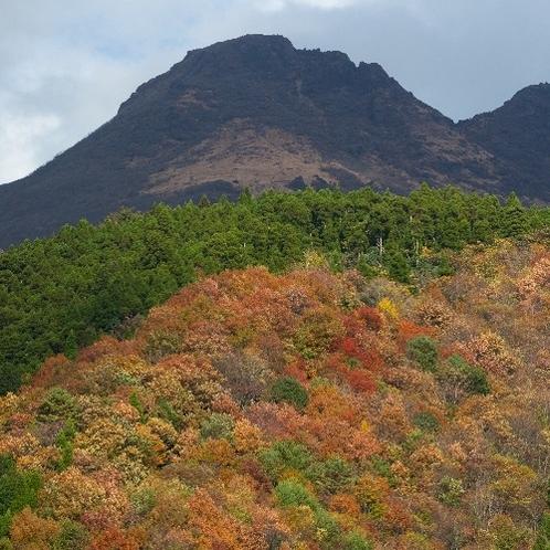 旅館から観える秋の由布岳