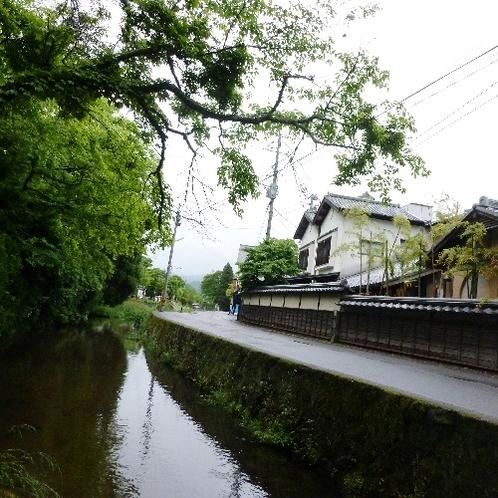 旅館のそばにある金鱗湖につながる大分川