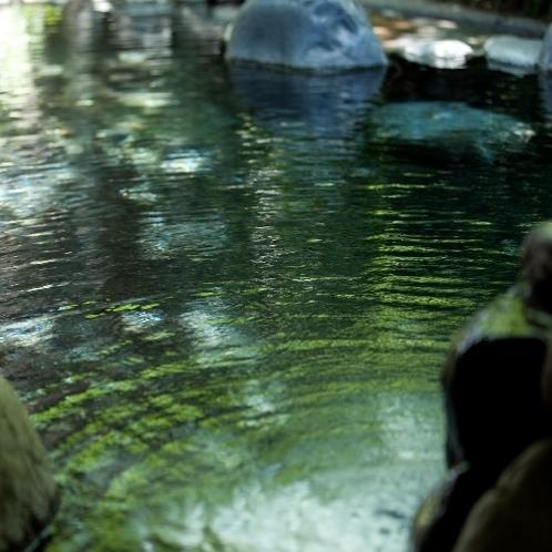 大浴場 源流の湯 露天風呂