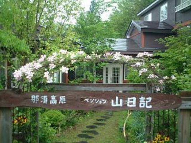 庭から玄関への写真