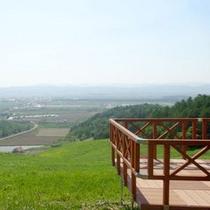 *山頂からは解放感抜群の景色が広がります!【アルパカ牧場】
