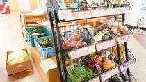 *野菜売り場/種類豊富に取り揃えております。