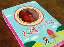 イチゴパッケージ1