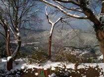 この冬恒例の景色