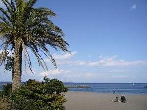 【伊豆ビーチ】夏におすすの伊豆のビーチ!