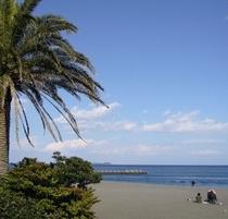 【伊豆の四季】伊東のビーチと言えばオレンジビーチ!AAAの綺麗さです。