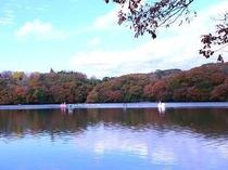 【一碧湖】秋には美しい紅葉も魅力です。