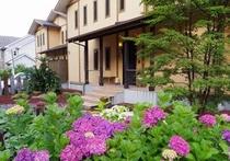 6月はアジサイがキレに咲きます。