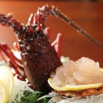 【別注料理】伊勢海老刺身/ぷりっぷりの身が絶品です!