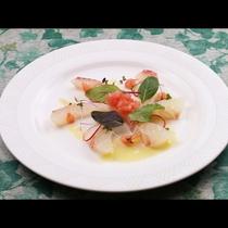 ぷりっぷりの真鯛のカルパッチョは、鮮度が味の決め手★★★