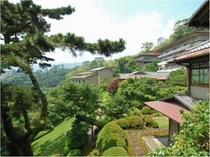 【庭園の風景】新緑