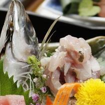 熱海でも人気のお魚「鯵(あじ)」をたたきでお楽しみください