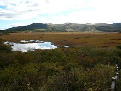 中秋の八島ヶ原湿原
