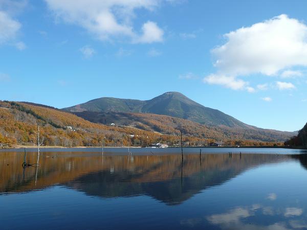 晩秋の女神湖から望む蓼科山
