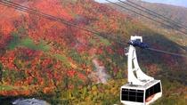 【観光施設】 初夏から秋まで、新緑に始まり、紅葉も楽しめる那須ロープウェイ