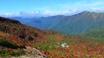 【紅葉】 茶臼岳「姥ヶ平」の紅葉