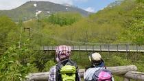 【散策】 那須平成の森や吊り橋など周辺を散策