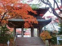 功山寺山門と紅葉