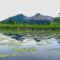 ジュンサイ沼と磐梯山