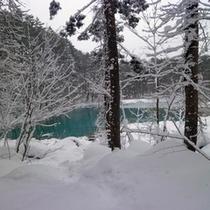 冬の五色沼自然探勝路