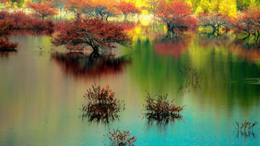幻の湖 紅葉の小田代湖 2011 10 1