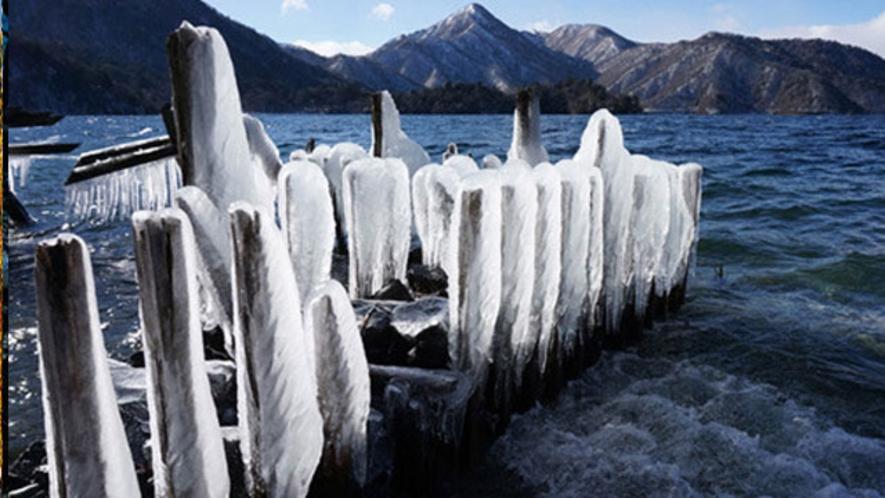 凍てついた風景 イタリア大使館記念公園  1月中旬