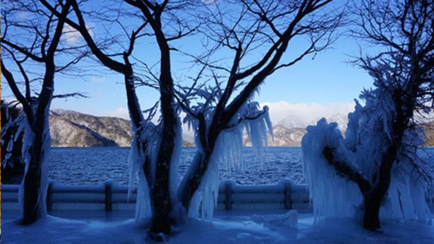 凍てついた風景 歌ヶ浜駐車場 1月中旬