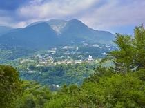 箱根の山々を見渡す絶景