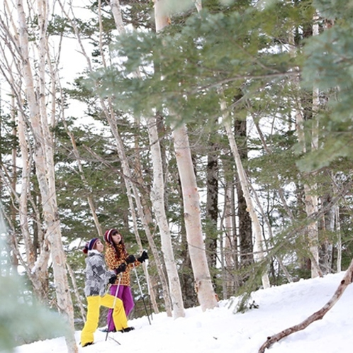 雪原を歩くスノーシューも人気です