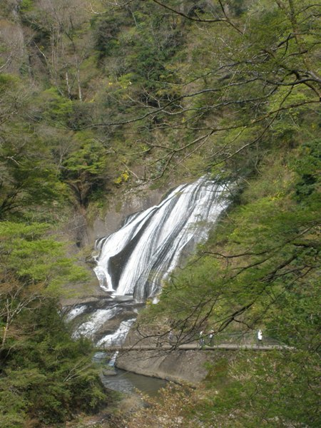 つり橋と滝