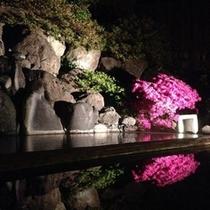 山里の湯 夜の風景