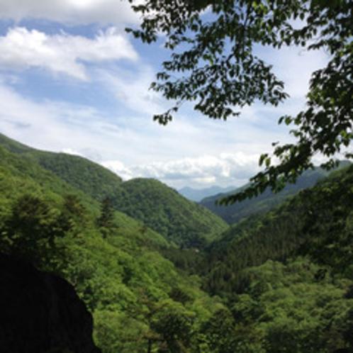 摩耶の滝遊歩道からの景色