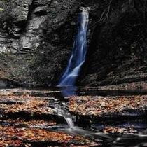 紅葉 赤目の滝2