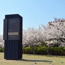 ≪春≫桜とともに・・・・