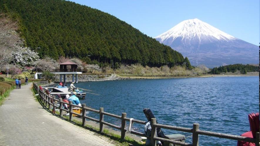 田貫湖を一周する遊歩道