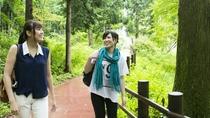 休暇村の田貫湖は1周約4kmの湖畔をのんびりお散歩。約1時間です。
