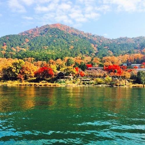 秋は紅葉♪