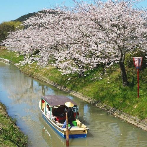 春の水郷めぐり