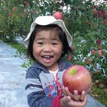 りんご狩りプラン(10月上旬~11月下旬)