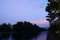【夕暮れ】ゆっくりと、次第に薄暗くなっていく松並木をごゆっくりお楽しみ下さい。