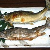 鮎・岩魚塩焼き