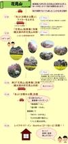 花見山ルート1