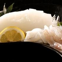 【別注料理】イカ刺身